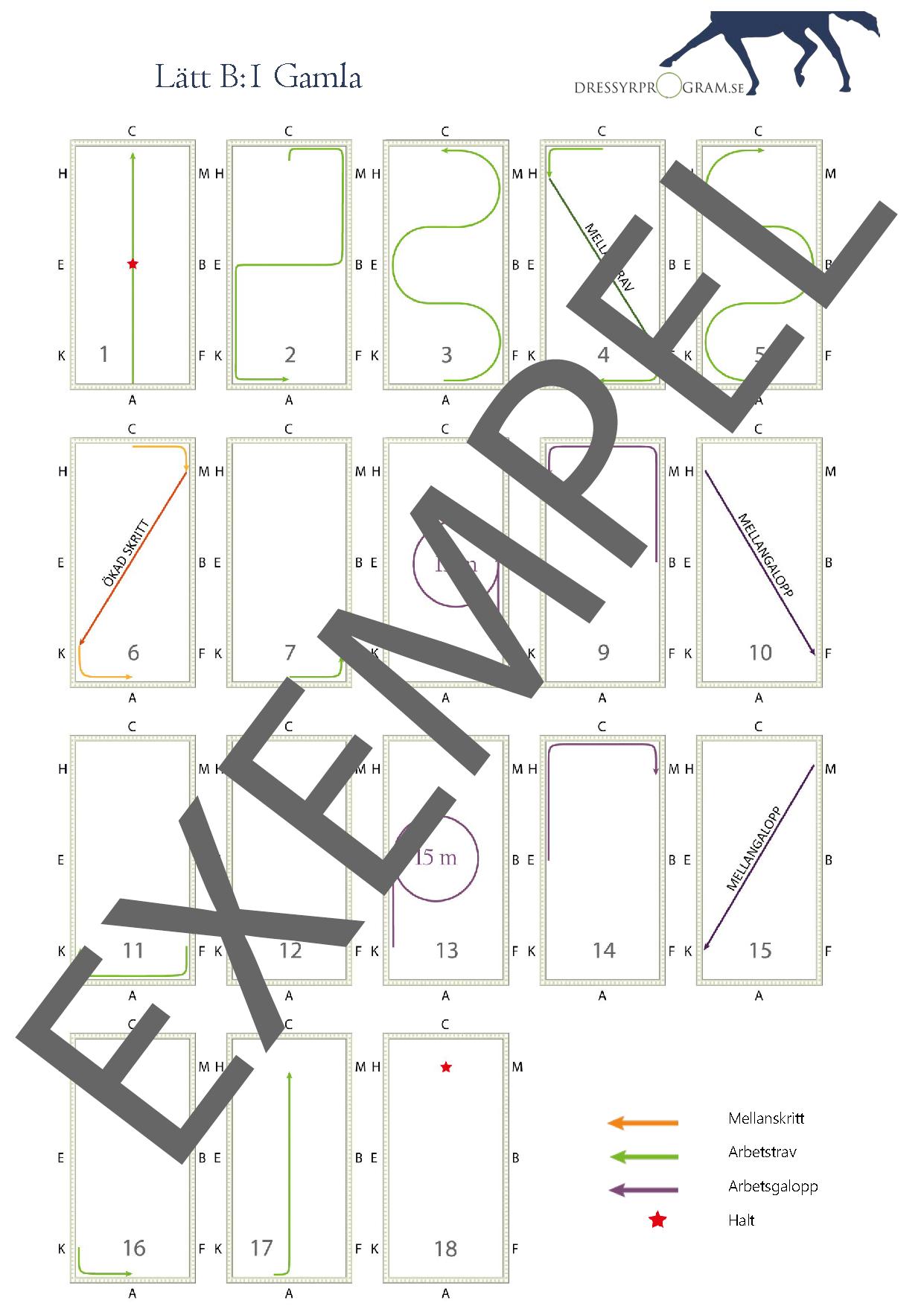 Utskrift av dressyrprogram i bilder Exempel